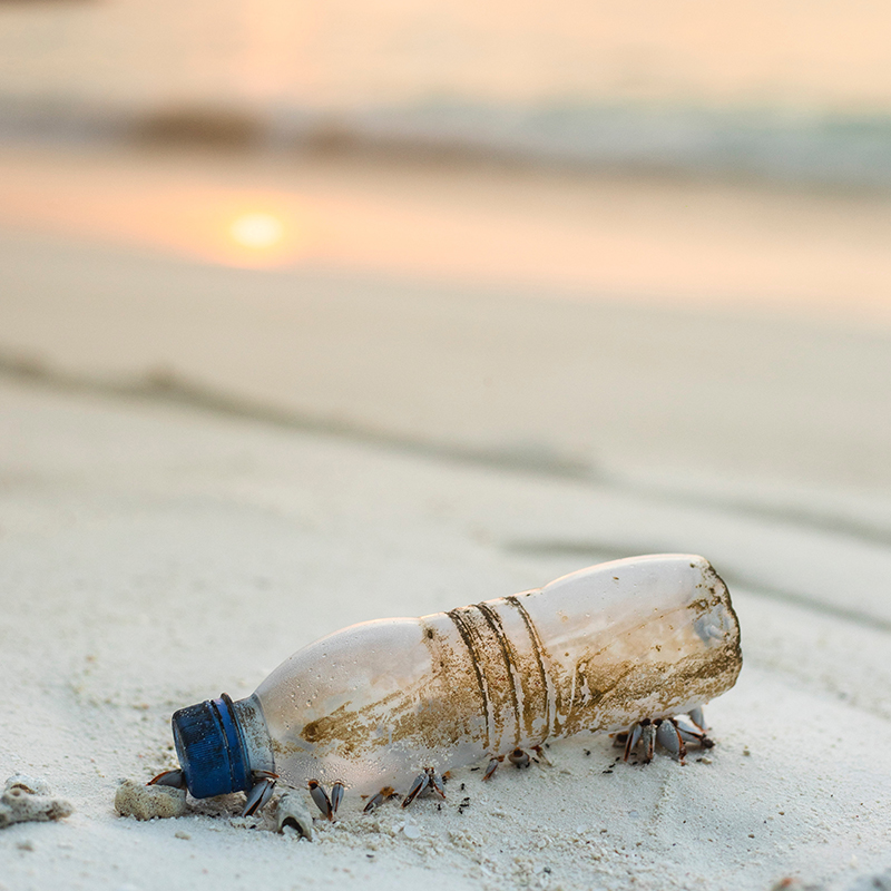 Dites adieu au plastique pour protéger l'environnement !