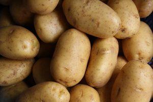 De bonnes pommes de terre pour de délicieuses purées !